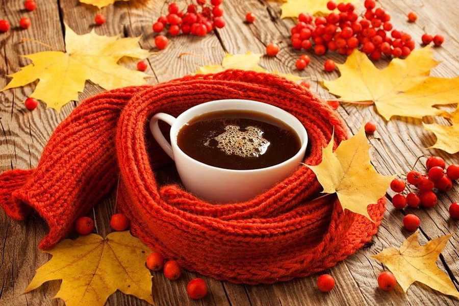 Найти идеальный рецепт имбирного чая
